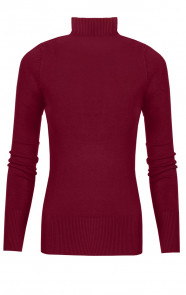 Coll-Sweater-Jersey-Bordeaux1