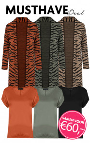Musthave-Deal-Zebra-Touch
